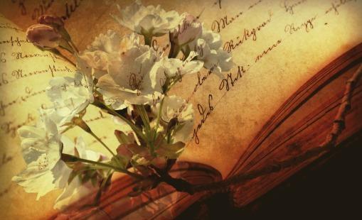 book-2808775_1920